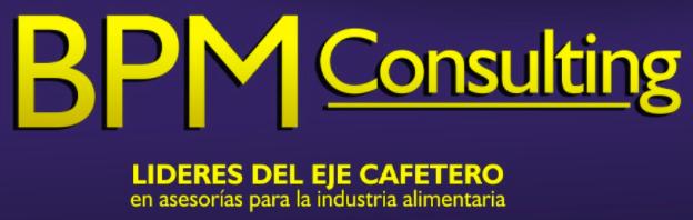 BPM-consulting